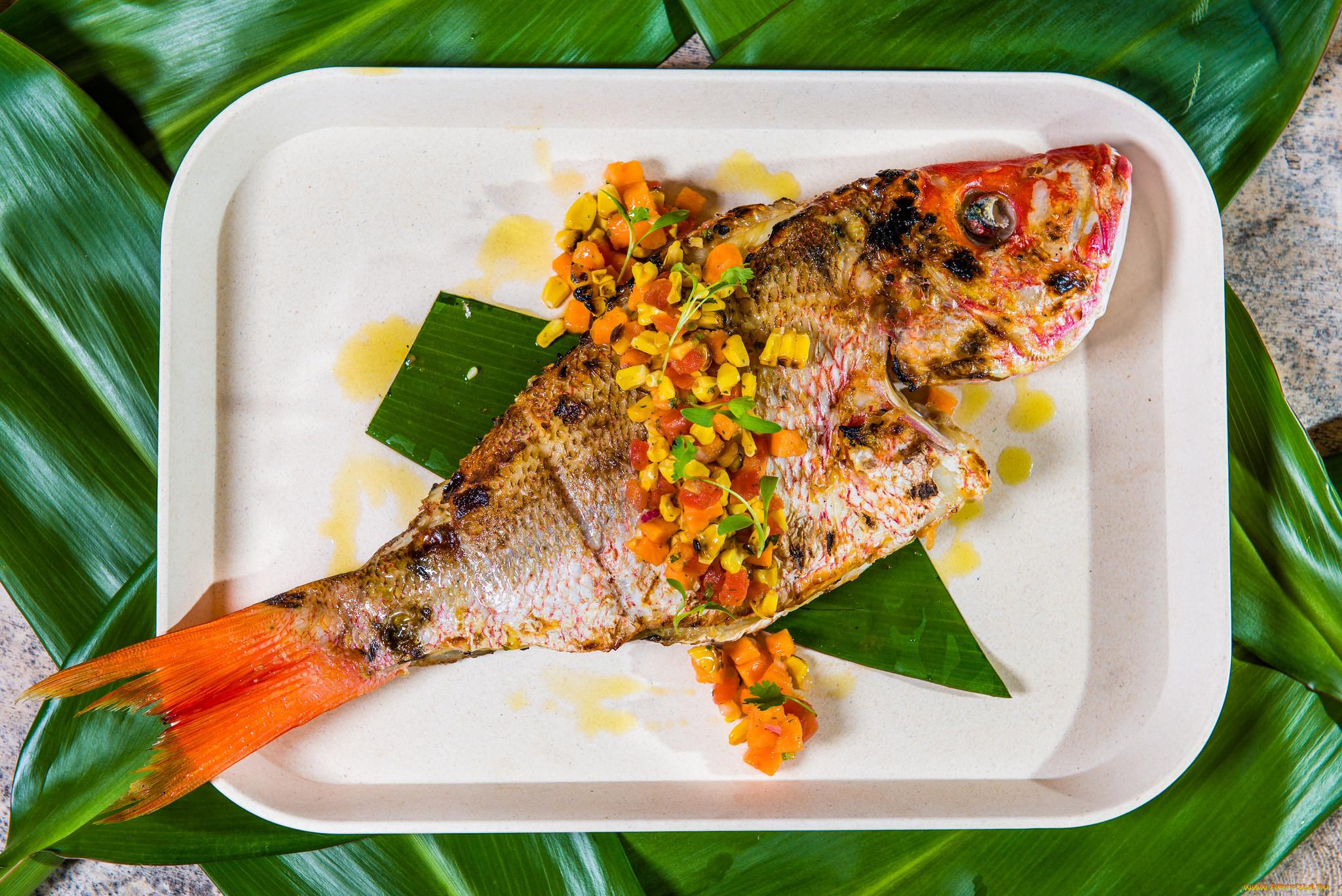 знакомство о рыбе блюда из рыбы с картинками двери купить